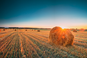 Rural Landscape Field Meadow With Hay Bales During Harvest In Sunny Evening. Late Summer
