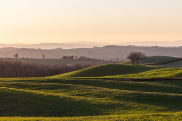 Beautiful view of Tuscany landscape hill at sunset, with mist and warm colors