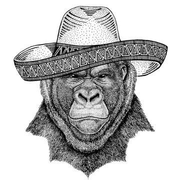 Gorilla, monkey, ape wearing traditional mexican hat. Classic headdress, fiesta, party.