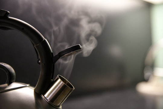 kettle with boiling water. whistle on a boiling kettle closeup. steam from the kettle through the opened whistle. spout of kitchen kettle