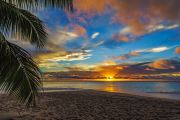 looking through palm leaf at sunset at anse georgette,praslin,seychelles 8