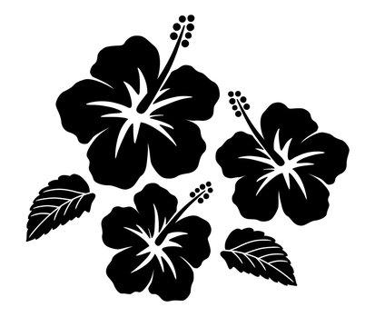Hibiscus icon set
