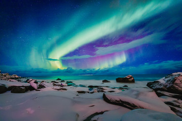 Fototapeta Amazing phenomenon - Aurora Borealis   over Uttakleiv Beach on Lofoten islands in Norway, Scandinavia, Europe. Northern lights - green ray of light in high stratosphere levels. Night winter landscape. obraz