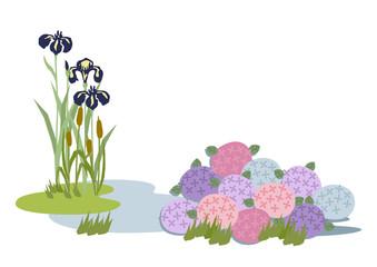 端午の節句のイメージ。菖蒲の花。 日本の季節のイラスト。 こどもの日のイラスト素材。