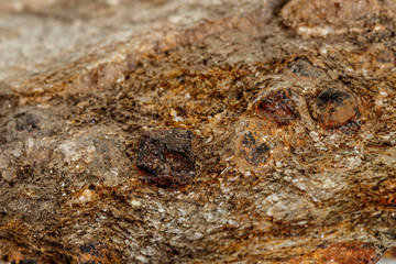 Macro stone Garnet mineral in rock on a white background