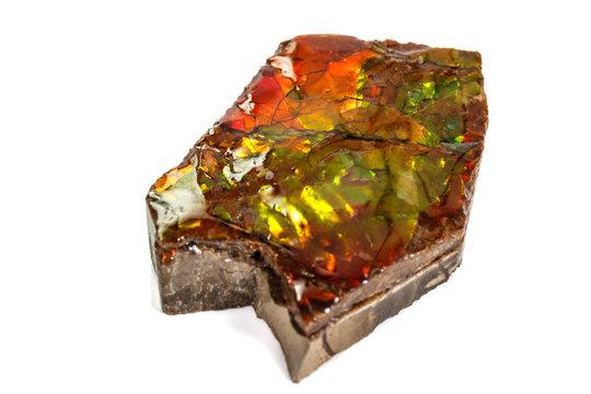 Macro stone Ammolite mineral on white background