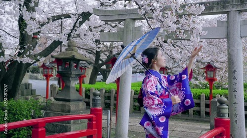 Wall mural Asian women in traditional japanese kimonos  with cherry blossoms in spring , Japan.