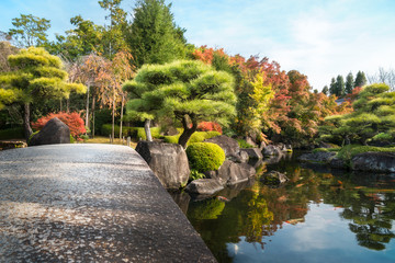 Low angle view from the stone bridge over the pond at Koko-en Gardens in Himeji, Japan - Sunny aspect of the park with colorful trees in autumn and Koi fish in the pond.