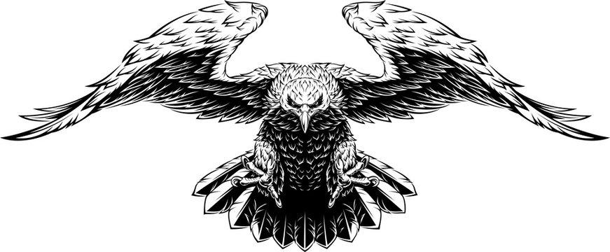 Flying big eagle