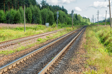 Railway track goes beyond the horizon through the forest