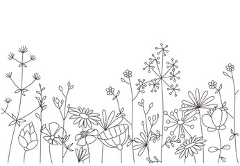 Fototapeta Floral template. Decorative botanical illustration in vector