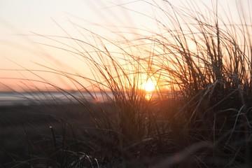 Sonnenuntergang Fotoväggar