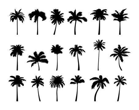 Coconut palm tree silhouette icon set.