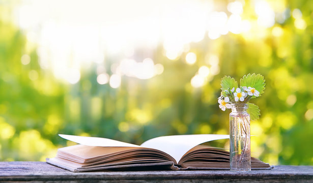 flowers of strawberry and book on natural summer background. pretty spring flowers, open book on wooden table, summer garden scene. spring or summer season, gently landscape. soft selective focus.
