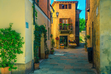 Rustic stone houses decorated with green plants, Pienza, Tuscany, Italy