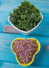 Sprouts and leaves of kale as an ingredient of a healthy diet.