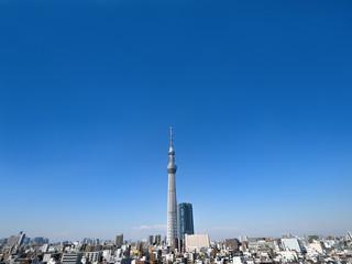 Wall Mural - 東京スカイツリーと住宅街