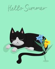 Vector illustration character design black cat sleeping on green pastel color