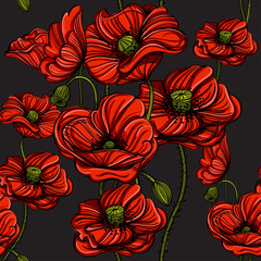 Seamless pattern with red poppies. Hand-drawn floral background for wallpaper, wrapping paper, pattern fills, gift packaging, printing.
