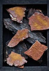 Gourmet dish served on tree bark