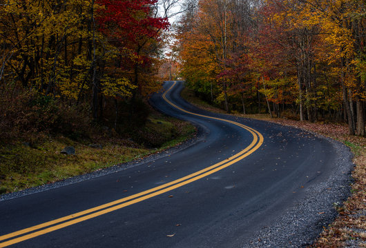West Virginia S curved, road during peak fall colors. This is a great place for tourists to visit and travel through during autumn because the roads are lined with beautiful colored trees and foliage.