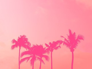 Poster Candy pink Palm tree silhouette pink pastel sky with copy space summer concept