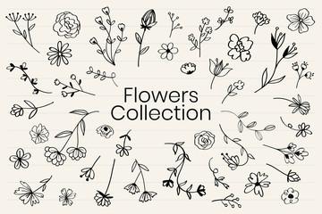 Hand drawn flower set