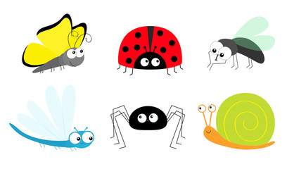 Butterfly Lady bug ladybird Fly Housefly Spider Snail Dragonfly insect icon set. Baby kids collection. Cute cartoon kawaii funny character. Smiling face. Flat design. White background.