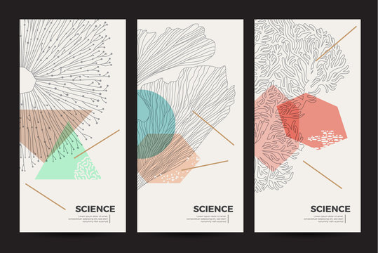 A set of minimalistic templates with natural elements for packaging and decoration of cosmetic products, beauty salons and spa. Graphic linear illustration of corals, algae and jellyfish