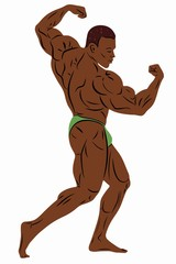 illustration of bodybuilder , vector drawing