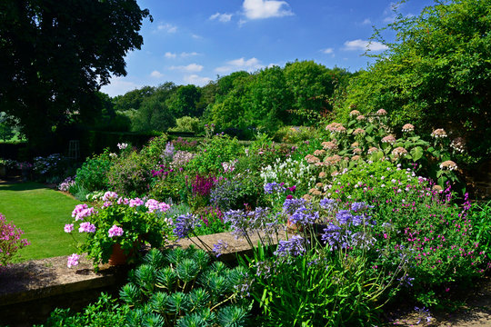 Garden view from terrace to colourful border and open countryside with Agapanthus and Pelargonium