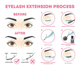Eyelash extension guide for woman. Infographic with eyelashes