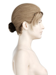 3d rendered illustration of a womans head