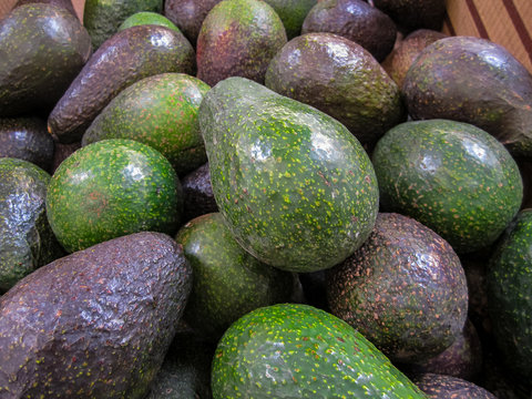 Fresh ripe avocados on display at local grocery market.
