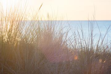 Fototapete - Den Sonnenuntergang am Meer geniessen