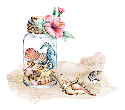 Seashells in glass jar, marine scenery. Watercolor flower, seahorse, starfish and other shells on sea beach. Isolated on white background. Hand drawing.