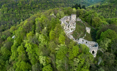 Ruins of a castle on a mountain covered by forest.