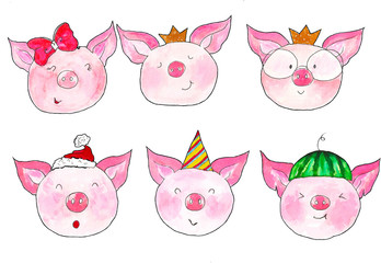 Funny pigs faces emotions. Watercolor Pig. Isolated on white background. Cute watercolor illustration for post, greeting.