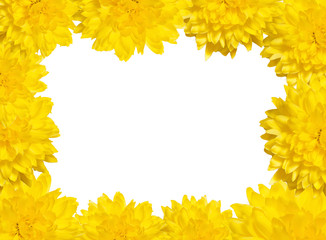 frame of yellow flowers, frame vignette to insert your favorite photos