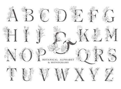 Floral botanical alphabet. Letter with plants and flowers.