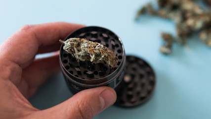 metal grinder for grinding marijuana in the male hand on a blue background.