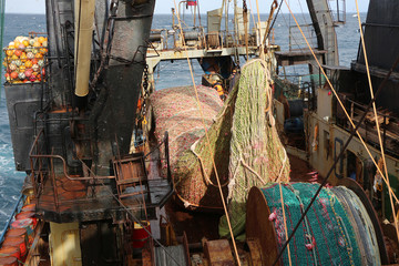 Search photos trawl