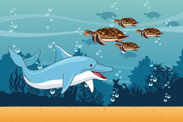 Sea with dolphin and turtles scenery