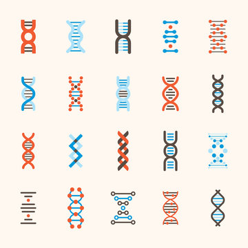 DNA patterns of various structures. flat design style minimal vector illustration
