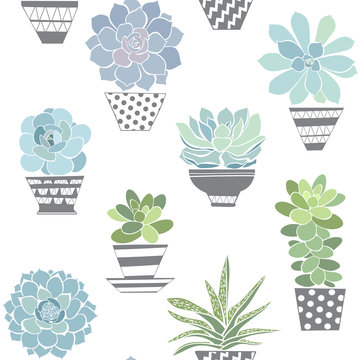 Seamless pattern with succulents in pots. Vector background.