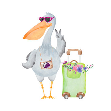 Watercolor pelican with suitcase and camera. Hello Summer card