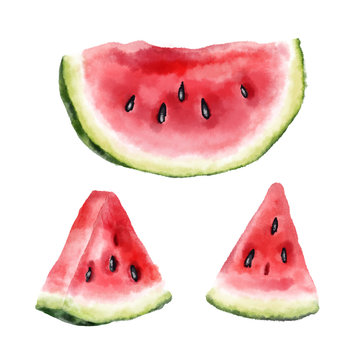Watermelon slices isolated on white background. Watercolor hand drawn illustration.