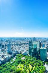 Wall Mural - skyline aerial view of shinjuku in Tokyo, Japan