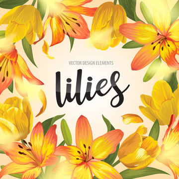 Blooming beautiful yellow lily and tulip flowers background template. Vector set of blooming floral for wedding invitations, greeting card, voucher, brochures and banners design.