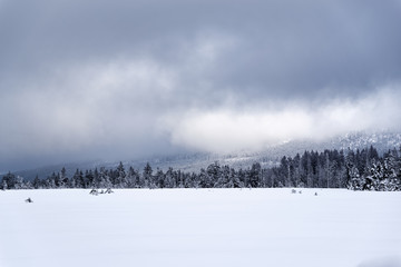 Panoramic view at a winter landscape in Harz mountains national park